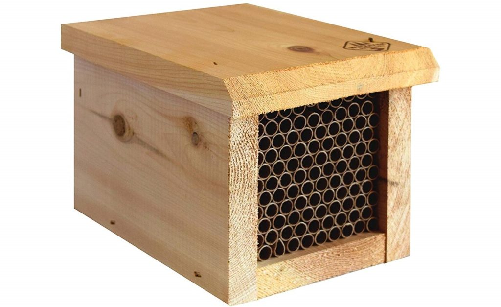 bee house for mason bees
